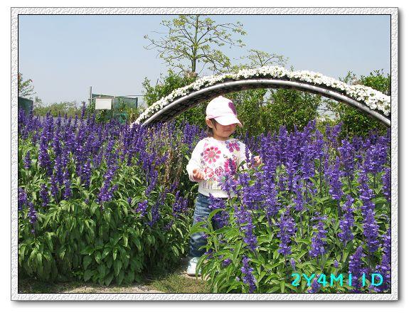 2Y04M11D-中社花園009.jpg