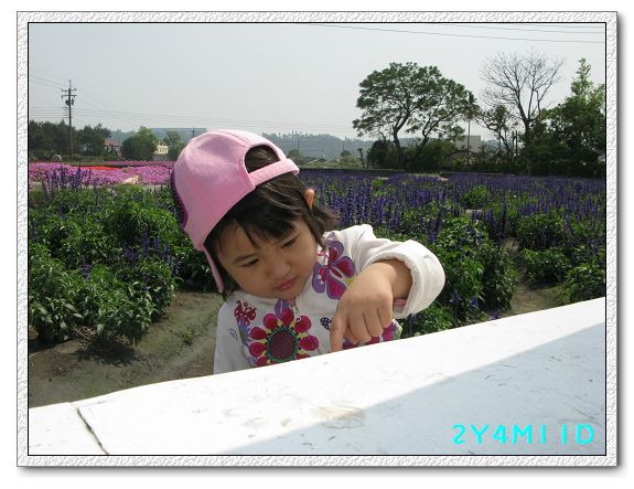 2Y04M11D-中社花園061.jpg