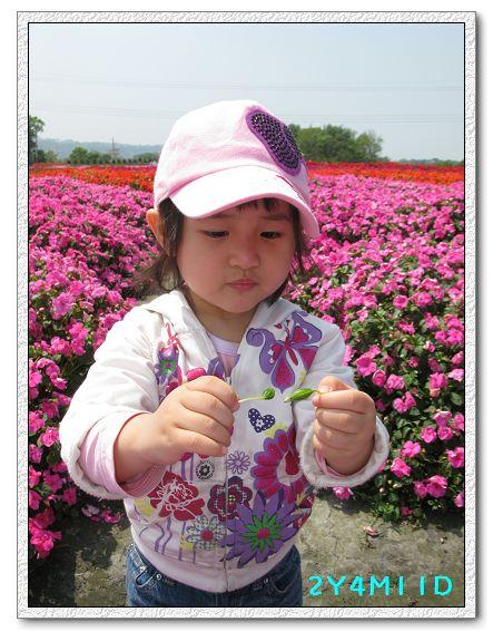 2Y04M11D-中社花園036.jpg