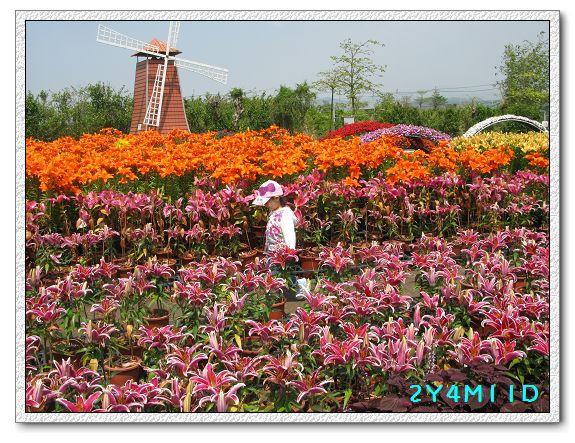 2Y04M11D-中社花園018.jpg