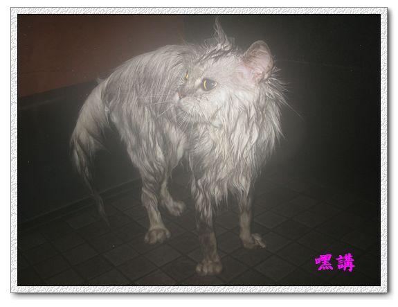 1Y2M14D嘿講洗澡-08.jpg