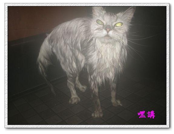 1Y2M14D嘿講洗澡-09.jpg
