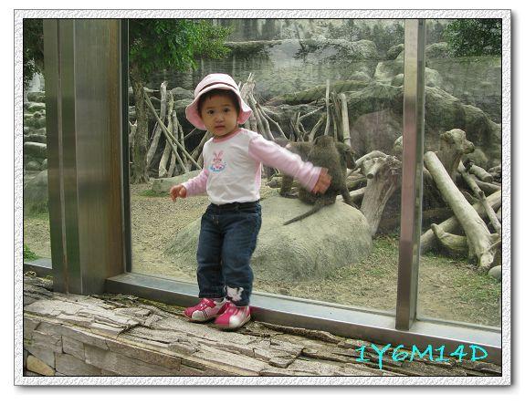 1Y6M14D-05 動物園.jpg