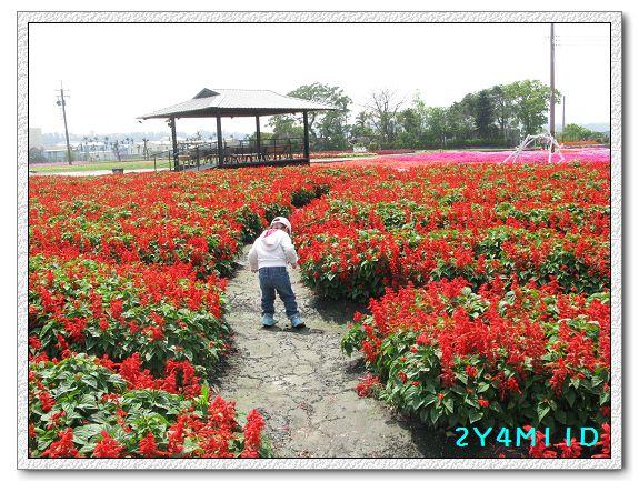 2Y04M11D-中社花園040.jpg