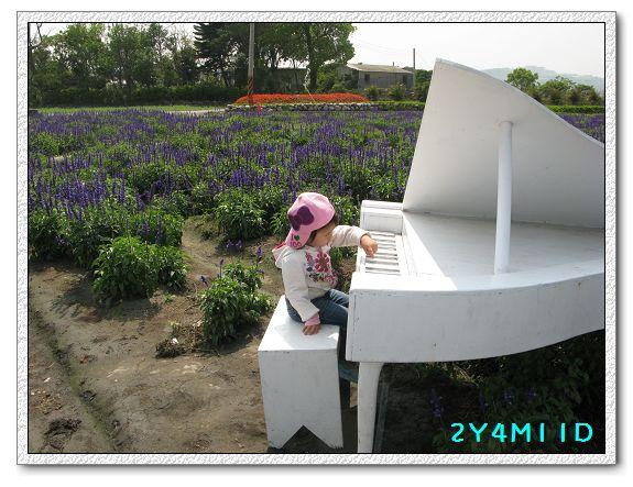 2Y04M11D-中社花園059.jpg