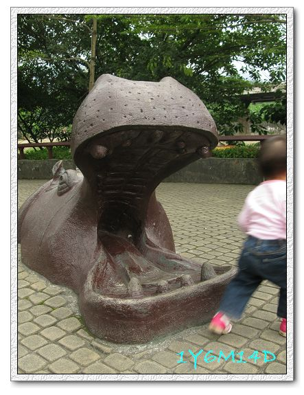 1Y6M14D-29 動物園.jpg