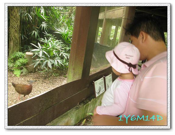 1Y6M14D-03 動物園.jpg
