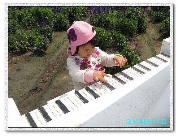 2Y04M11D-中社花園062.jpg