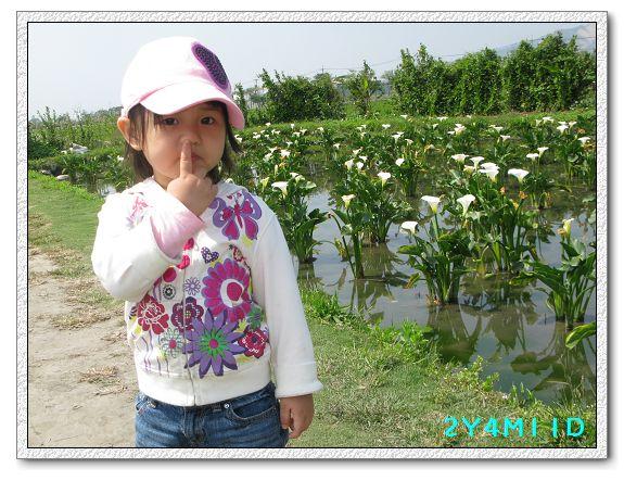 2Y04M11D-中社花園089.jpg
