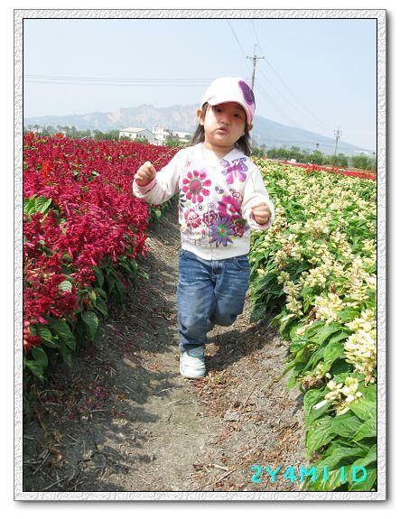 2Y04M11D-中社花園099.jpg