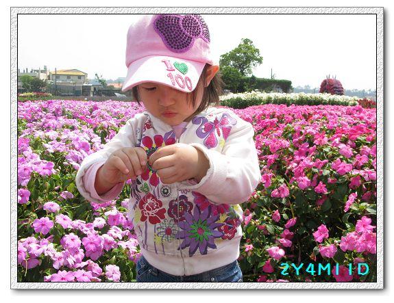 2Y04M11D-中社花園034.jpg