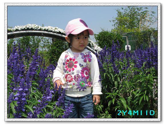 2Y04M11D-中社花園010.jpg