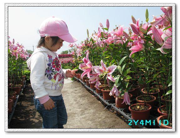 2Y04M11D-中社花園011.jpg