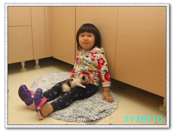 2Y03M21D-小貓01.jpg