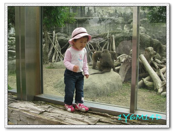 1Y6M14D-07 動物園.jpg