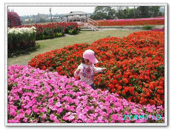2Y04M11D-中社花園026.jpg