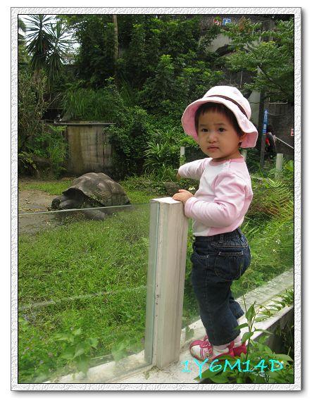 1Y6M14D-02 動物園.jpg