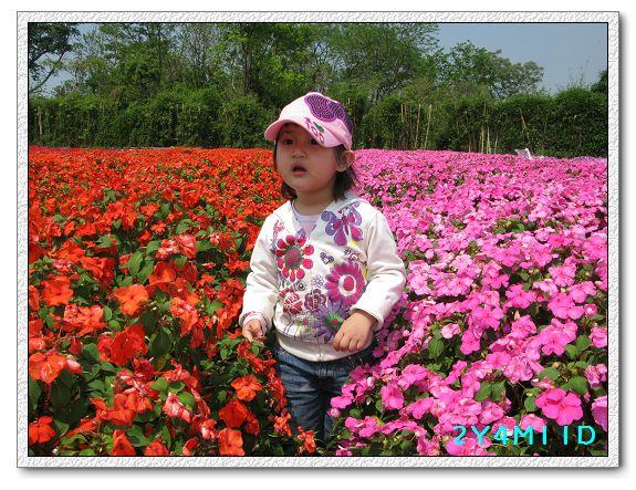 2Y04M11D-中社花園025.jpg