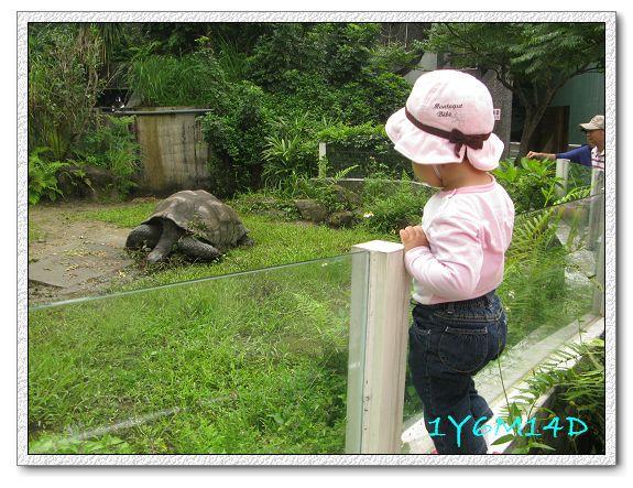 1Y6M14D-01 動物園.jpg