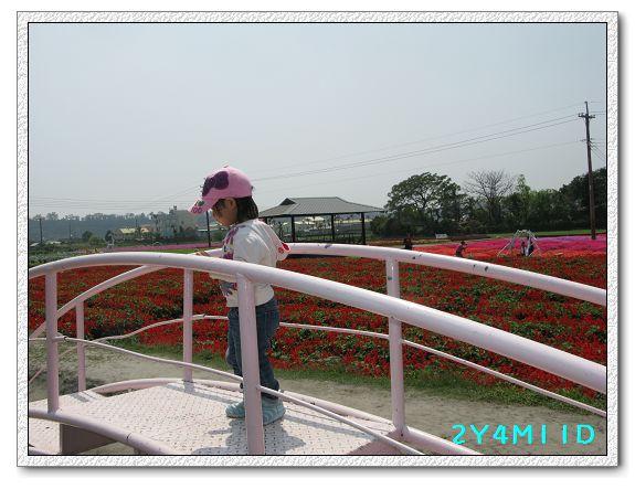 2Y04M11D-中社花園037.jpg
