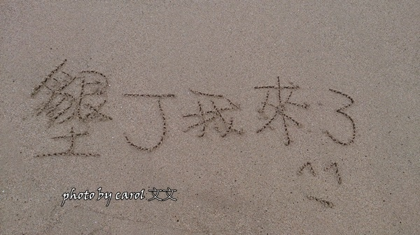 DSC_9315.JPG