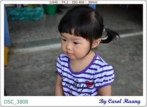 DSC_3808