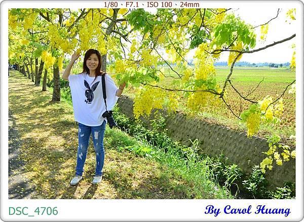 DSC_4706