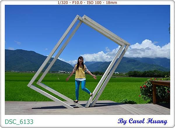 DSC_6133