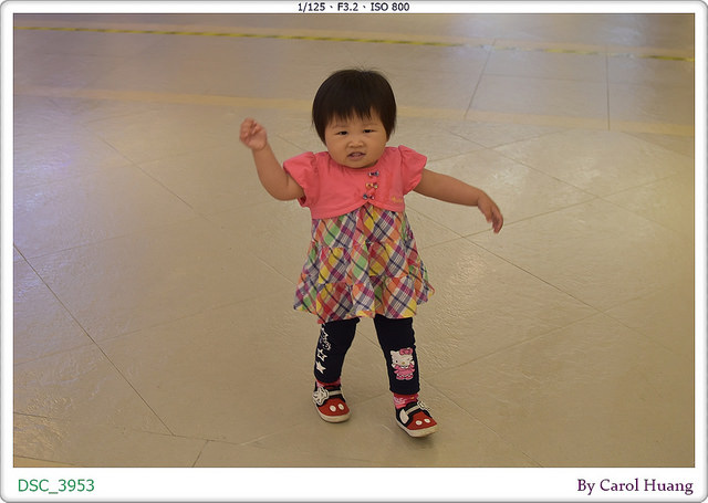 DSC_3953