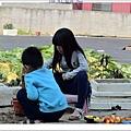 NK2_1358.JPG