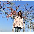 NK2_1504.JPG