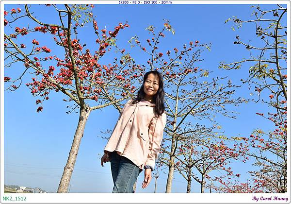 NK2_1512.JPG