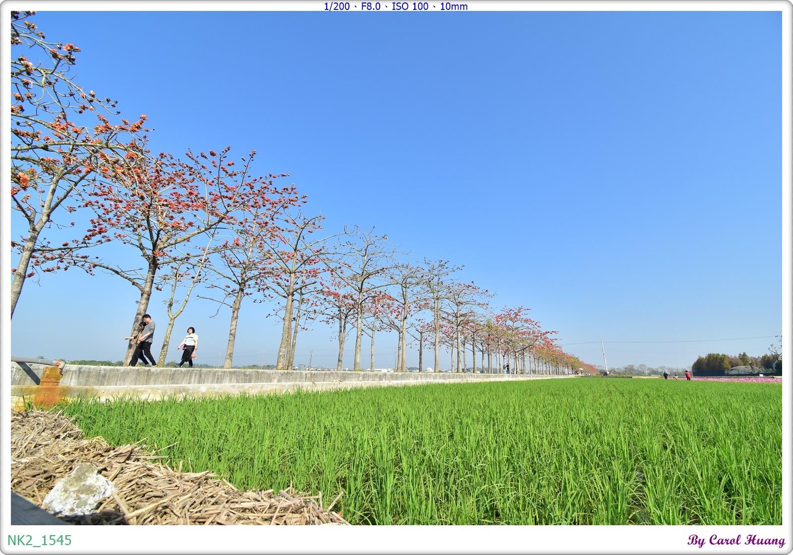 NK2_1545.JPG