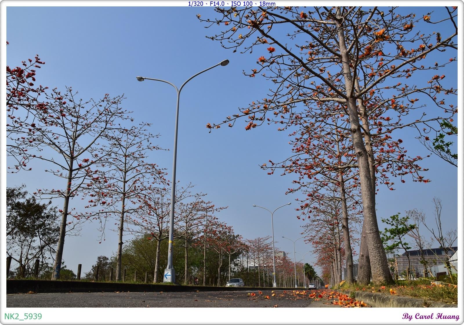NK2_5939.JPG