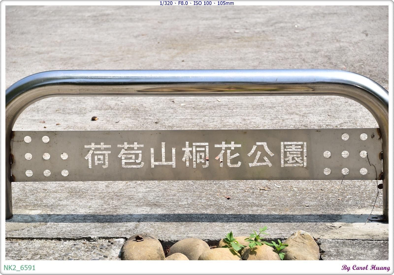 NK2_6591.JPG