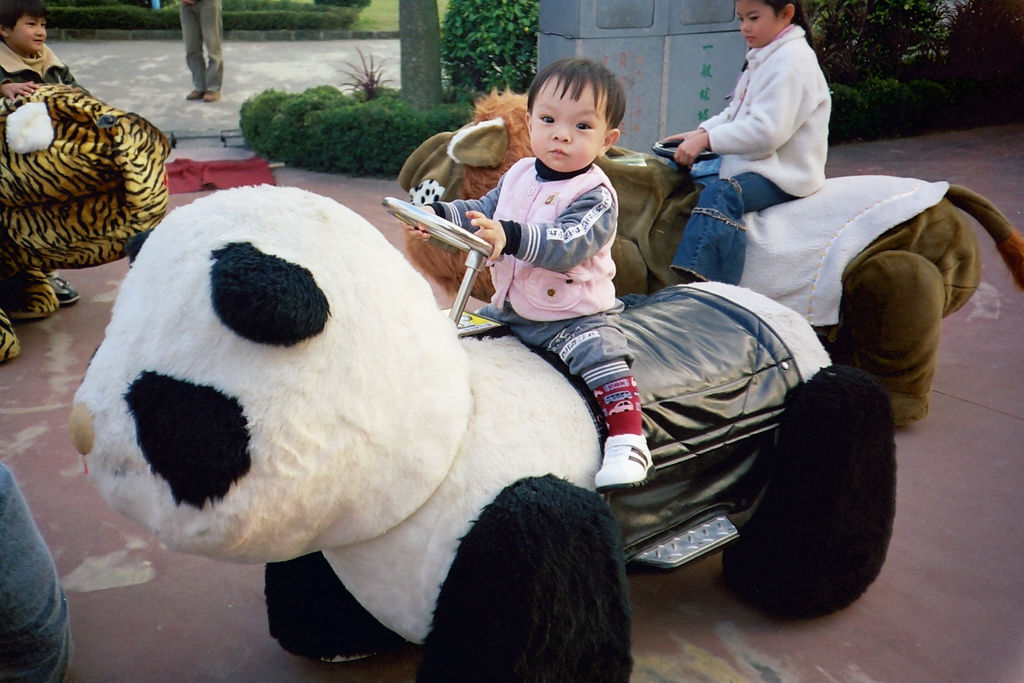 文辰騎熊貓.JPG