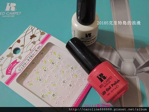 DSCN3555_副