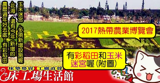 2017屏東熱帶農業博會-彩稻田-玉米迷宮-花海