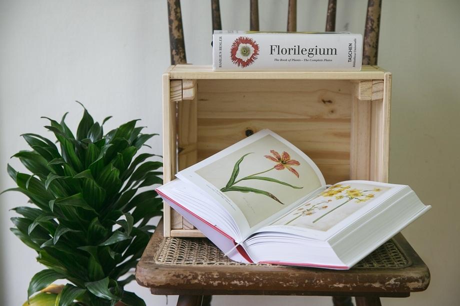 【植物圖鑑】A Garden Eden  、Florilegium %2F  TASCHEN
