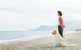 與狗狗的十個約定.jpg