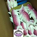 海底世界魚類製作