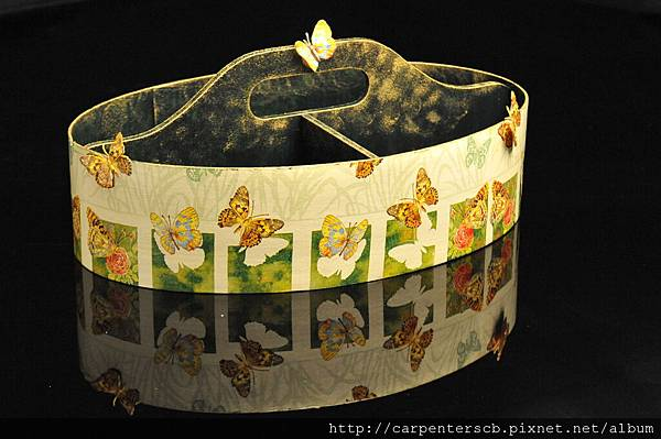 DSC_8459-野餐盒上的蝴蝶.JPG