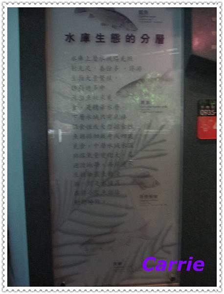 IMG_0974_nEO_IMG.jpg