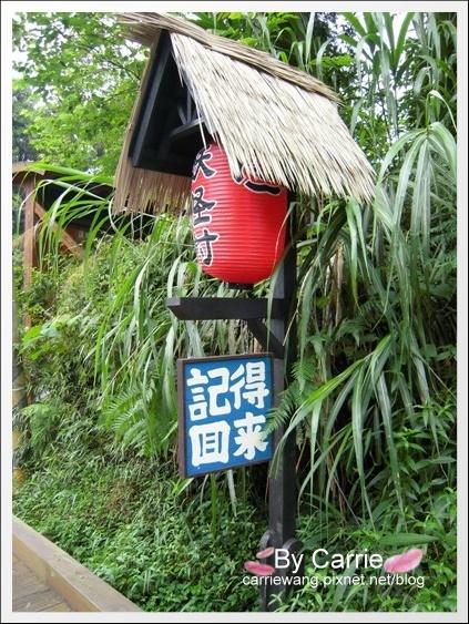 溪頭.妖怪村 (49).jpg
