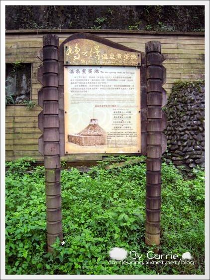 鳩之澤溫泉+翠峰湖 (7)