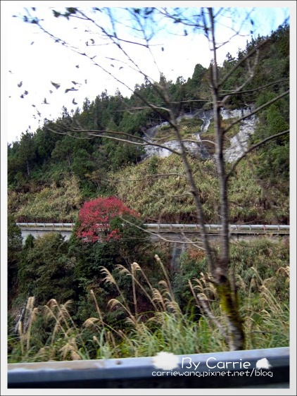 鳩之澤溫泉+翠峰湖 (23)