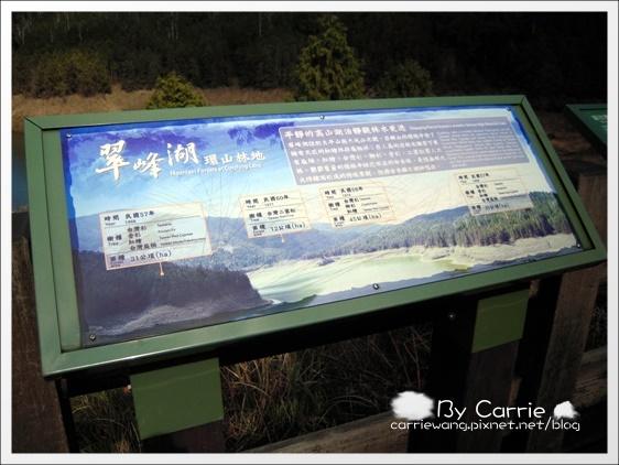 鳩之澤溫泉+翠峰湖 (39)