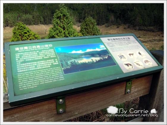 鳩之澤溫泉+翠峰湖 (40)