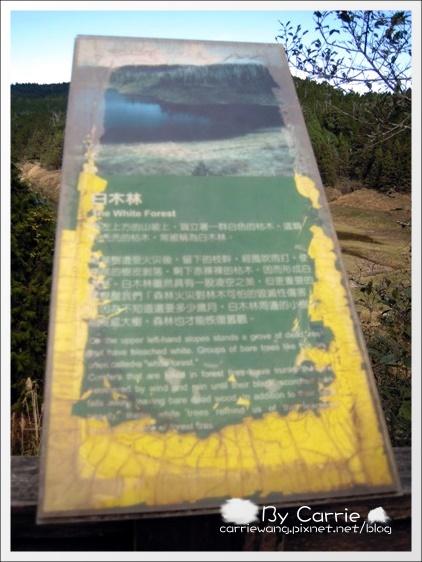 鳩之澤溫泉+翠峰湖 (41)
