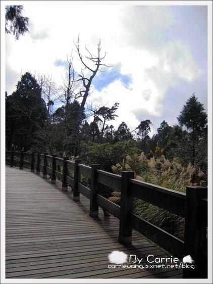 鳩之澤溫泉+翠峰湖 (53)